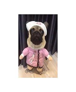 GHYSTORM Vêtements de Chien Cosplay pour Petits Chiens Hiver Bouledogue français Veste Debout Cartoon Chien Costume d'halloween Chihuahua vêtements pour Animaux de Compagnie
