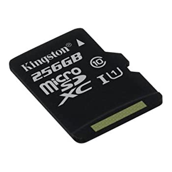 Kingston SDCS/256GBSP - MicroSD Canvas Select velocidades de UHS-I Clase 10 de hasta 80 MB/s Lectura (sin Adaptador SD)