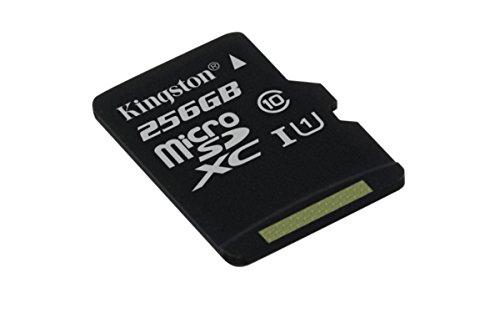 Kingston SDCS/256GBSP MicroSD Canvas Select  Geschwindigkeiten der Klasse 10 UHS-I - bis zu 80 MB/s Lesezugriff  ( Nur Karte )- Erwecken Sie HD-Videos zum Leben -