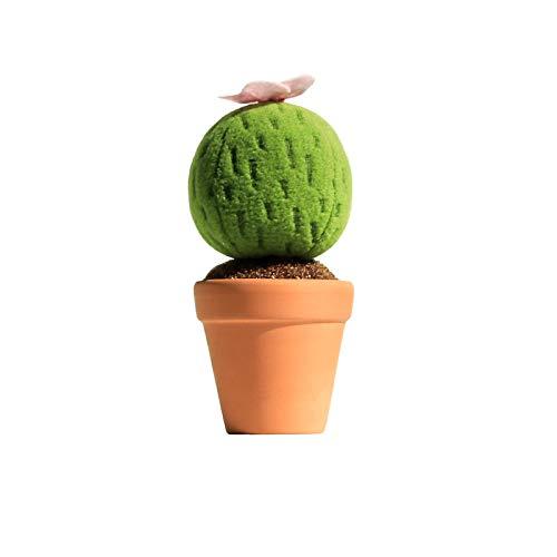 SMAQZ Kaktuspflanzendekoration - Niedliches Simulationsgrün 17 * 8 (Sexy Valentinstag Ideen Für Ihn)
