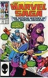 Essential Marvel Saga - Volume 2 (v. 2) by Sanderson, Peter, Lee, Stan, Miller, Frank, Thomas, Roy, Kir (2008) Paperback