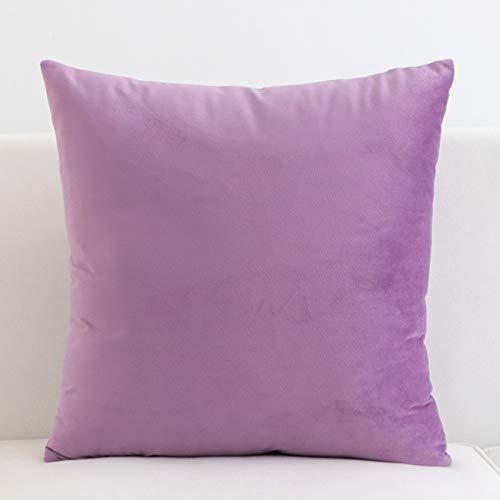 JINSH Home Couleur Unie Super Doux Tissu Velours Court en Peluche Oreiller Housse de Coussin canapé Bureau siège de Voiture taie d'oreiller (Color : Purple, Size : Pillow Inner)