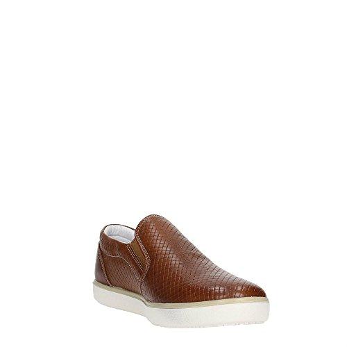 IGI & CO 57202 Keks Mann Schuhe Turnschuhe Slip-On elastische glänzende Haut Braun