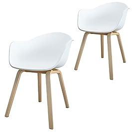Damiware Romeo Lot de 2 chaises de Salle à Manger en polypropylène et en Bois de hêtre, Style rétro, pour Le Bureau, la…