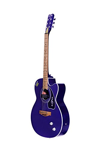 Givson Venus Super Special, 6-Strings, Semi-Electric Guitar, Right-Handed, Purple, With Guitar Cover/Bag  available at amazon for Rs.5500