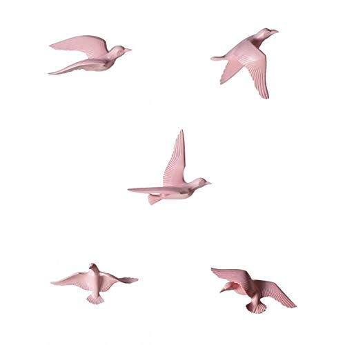 s - 5pcs Nautical 3d Resin Seagull Birds Sculpture Crafts Wall Hanging Decor Plaque Murals Bar Pink - Home Siwa Characters Zebra Basketball Live Office Navy Princesses Justice U -