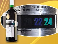 Rosenstein & Söhne Flaschenthermometer: Flaschen-Weinthermometer (Weinflaschenthermometer)