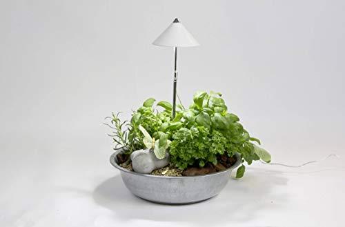 Venso Venso LED-Pflanzenlampe