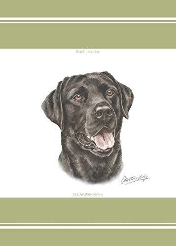 Evans Lichfield LABRADOR NOIR chiot chien 100% TORCHON COTON VERT 45 x 65cm - 17 \
