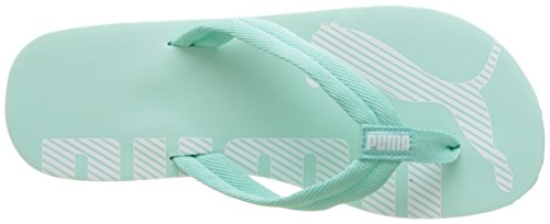 Puma  Epic Flip V2, Tongs mixte adulte Bleu (Aruba Blue-puma White 14)