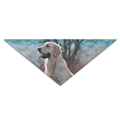 Berge Mann Kostüm - Kunst Golden Retriever Hund Baum Hund Bandanas Schals Dreieck Lätzchen Schals Stilvolle Basic Halstuch Katze Kragen