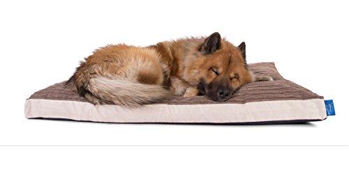 Mokka Cord (Silentnight Micro-Klima Luftstrom Hundebett - ( Mittel 85x65cm ) - Cord Mokka)