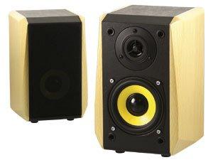 Dynavox TG-1000B Hifi Regal Lautsprecher 50 W (Paar) buche