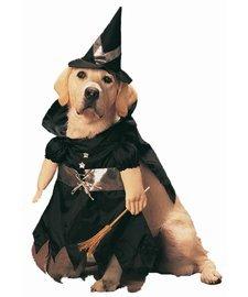 Kostüm Bewitched - Bewitched Pet Kostüm klein