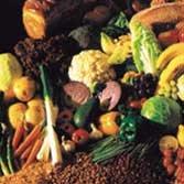 fosnova 5261–Filtre légumes projecteurs 5261160