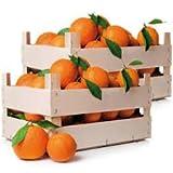 Arance di Sicilia Varietà Navel Prima Scelta Produzione Propria 15 Kg
