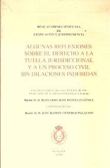 ALGUNAS REFLEXIONES SOBRE EL DERECHO A LA TUTELA JURISDICCIONAL Y A UN PROCESO CIVIL SIN DILACIONES INDEBIDAS (Sevilla, 1994)