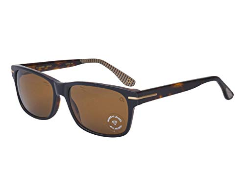 Etnia Barcelona Sonnenbrillen (HARVARD BKHV) schwarz - havana dunkel - grau-braun