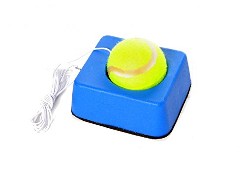 Tennis Trainer block piccolo, 900 gr, m.Ball/elastico