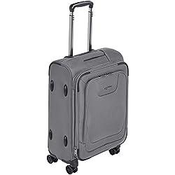 AmazonBasics Premium Valise souple et extensible à roulettes pivotantes avec serrure TSA intégrée 53cm, Gris