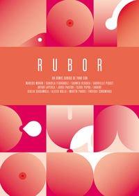 rubor-novela-grfica