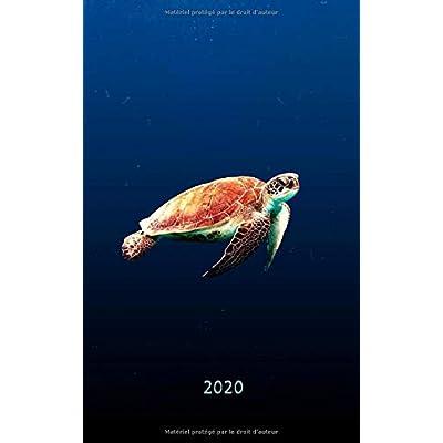 2020: Journal 2020 - Une Page par Jour / Agenda / Écriture de journal/ Journal Gratitude / Journal de famille / Tortue en haute mer
