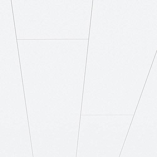 Avanti Wandpaneel und Deckenpaneel Superweiss glänzend 2600 x 254 x 10 mm