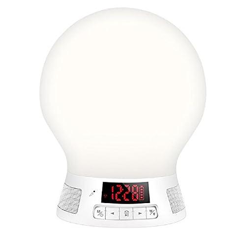 Koiiko Lampe océan avec projecteur - Multicolore Aurore Ambiance romantique, fantastique, relaxation avec musique apaisante Mini haut-parleur - Veille et arrêt automatiques après 1heure, MP6+KO+UK-3 3.0 wattsW