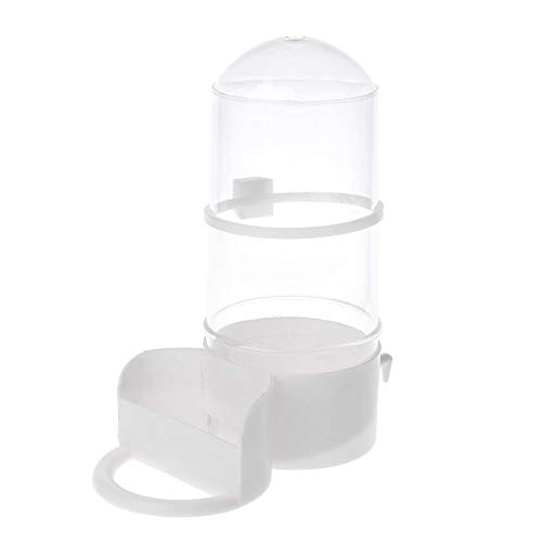 Asien 1pc Automatique Hamster Feeder Alimentaire...