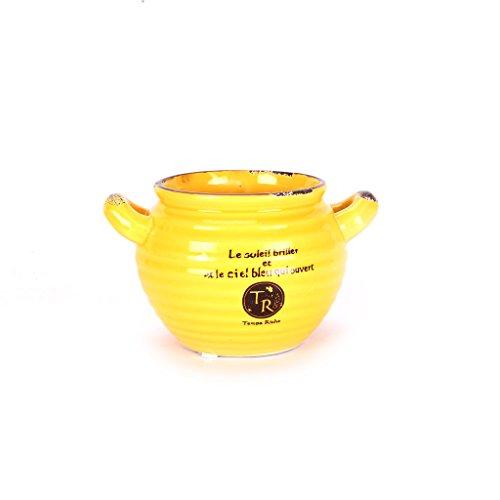 scrafts yellow ceramic/procelain artificial/original/succulent flower pot/planter with drainage hole for home décor/table décor/dry flower decoration/succulent planting  available at amazon for Rs.230