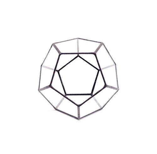 dodecahedron-klein-geometrisches-glas-terrarium-handgemachtes-pflanzglas-modernes-pflanzgefass-fur-d