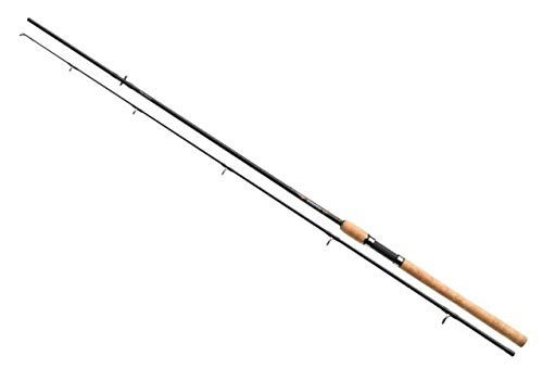 Sweepfire Spin 2,40 m 40-100 g