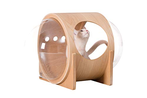 MYZOO Spaceship Alpha, Pet Bed for Cat & Dog, Window Perch,...