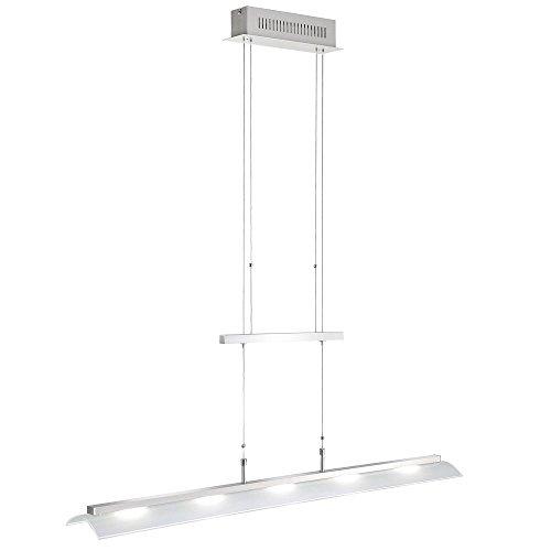 led-hange-leuchte-verstellbare-decken-pendel-lampe-glas-paul-neuhaus-8058-55