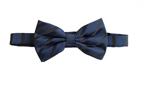 Noeud papillon de Fabio Farini en bleu noir