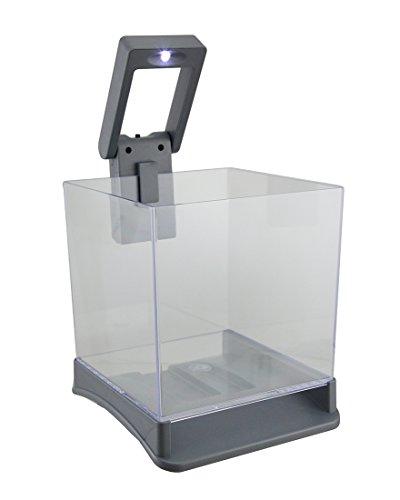 Betta Box 7Gallonen Betta Fisch Cube Tank W/Weiß LED-Licht