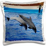 Kike Calvo Dolphins - Two dolphins in mid dive together at Oceanographic Aquarium in Valencia, Spain - 16x16 inch Pillow Case