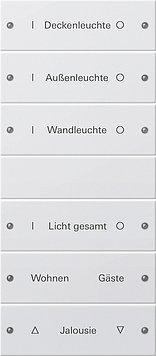Preisvergleich Produktbild Gira 220627 Wippenset 6fach,beschriftbar System 55 Reinweiß matt