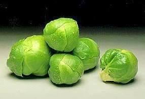 1000 LONG ISLAND AMELIORE Choux de Bruxelles Brassica oleracea gemmifera Graines de légumes