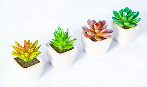 Posh Butler Künstliche Mini-Suchkulenten, künstliche Kakteen aus Kunststoff, Weiß, 4 Stück