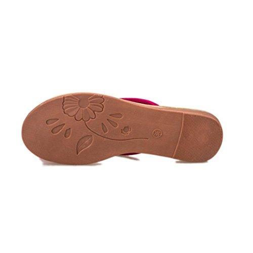 Coloré TM Sandales Femme Tongs Femmes Sandales DÉté Pantoufles Loisirs Doux Tongs Chaussures de Plage Blanc