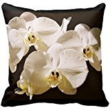 White Orchids Under The Sun Throw Pillows Beautiful Flower Floral Pillowcase Covers 18x18 Inch One Side