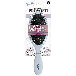 Franck Provost Wet & Dry Brosse Démêlante Cheveux Secs/Mouillés (Couleur Aléatoires)