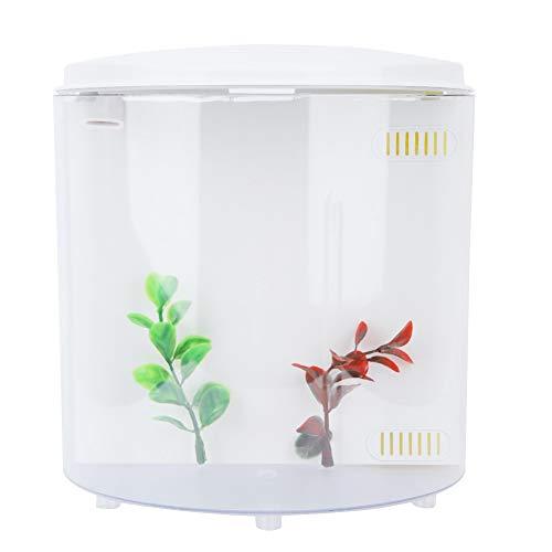 Pssopp Aquarium Fischbecken USB Mini Aquarium Desktop Micro-Landscape LED Aquarium Haushalt Mini Aquarium Wasser Gras Pflanzen Dekoration für Wohnzimmer Schlafzimmer Büro -
