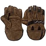 Arfa (Trade Mark) Aaina Sports - Junior Leather Wicket Keeping Gloves - 8 12 Years, Youth (Multi Colour)