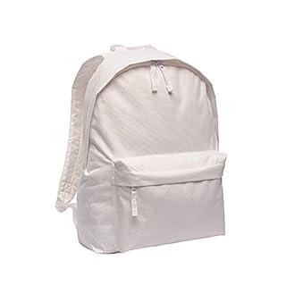 Regatta Standout Azusa 18 Liter Rucksack (Einheitsgröße) (Weiß)