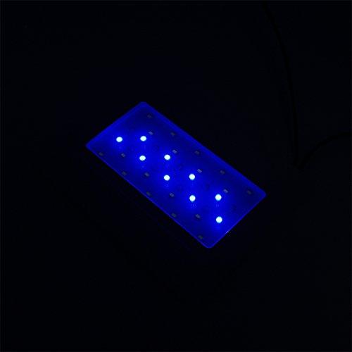 SunSun HKL-250 Nano Aquarium mit Beleuchtung und Innenfilter -