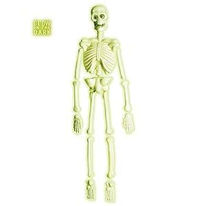 WIDMANN?Esqueleto Laboratorio 3d Fluo Unisex-Adult, verde, talla única, vd-wdm5228s