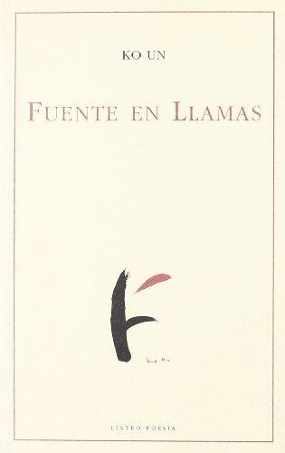 Fuente En Llamas