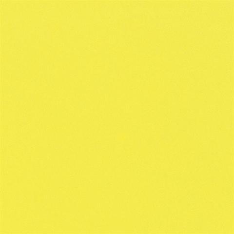 EFCO - Wachsplatten 200 x 100 x 0,5 mm 10 Stk. gelb